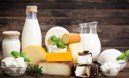 Dairy-rich diet linked to lower risk of diabetes and cardiovascular disease